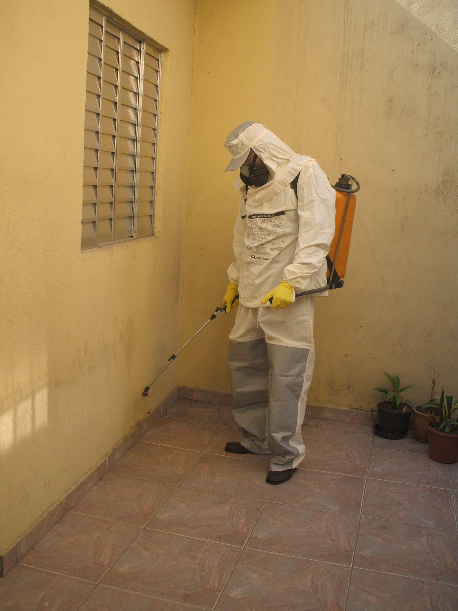 Matar pulgas em guarulhos melhor pre o e garantia 2488 9000 - Matar pulgas en casa ...